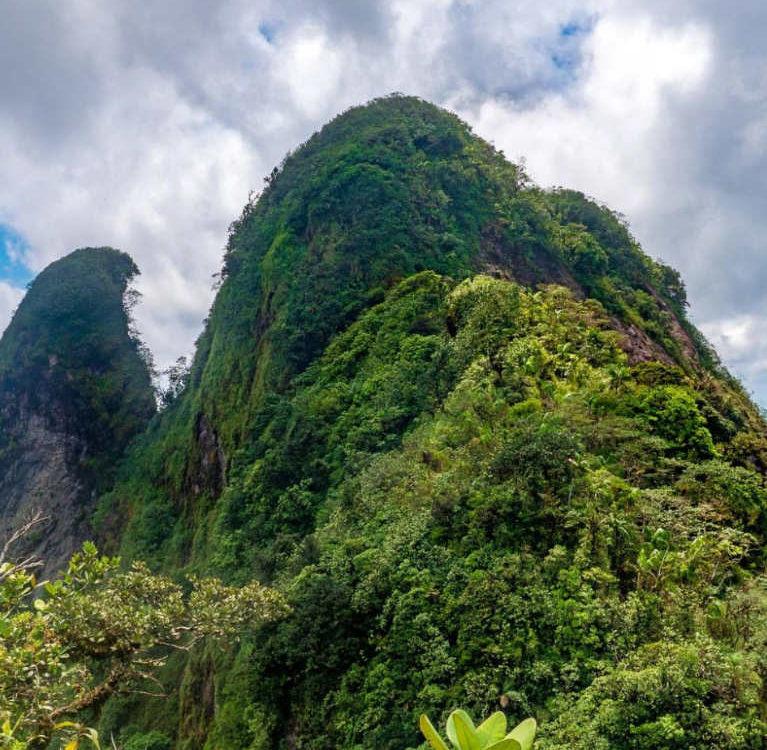 Cerro Trinidad - Capira