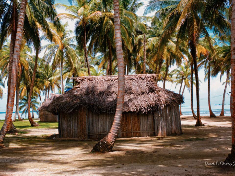 Isla Aguja en Guna Yala